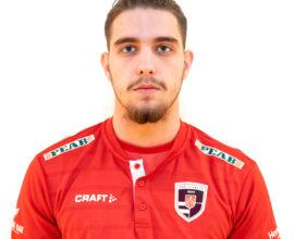 Aldin Gutic