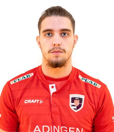 Aldin Gutić
